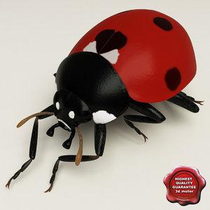 3d model ladybug pose7
