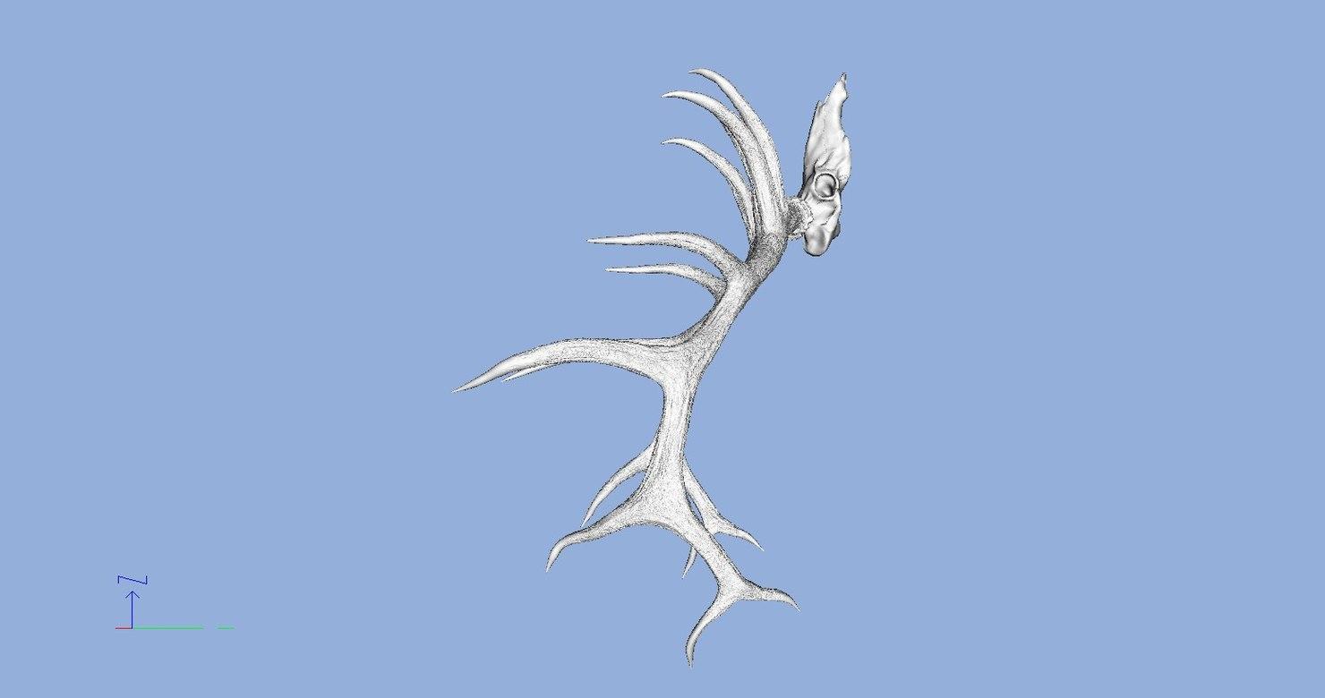 3d elk skull antlers
