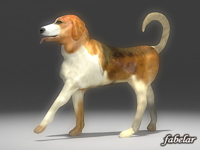 3d model beagle animals