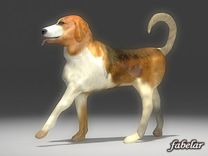 3d model beagle animals