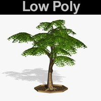 PL Low Poly Tree 66