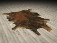 Animal Skin Rug N2
