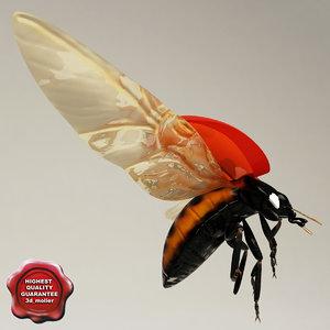 ladybug pose1 3d model