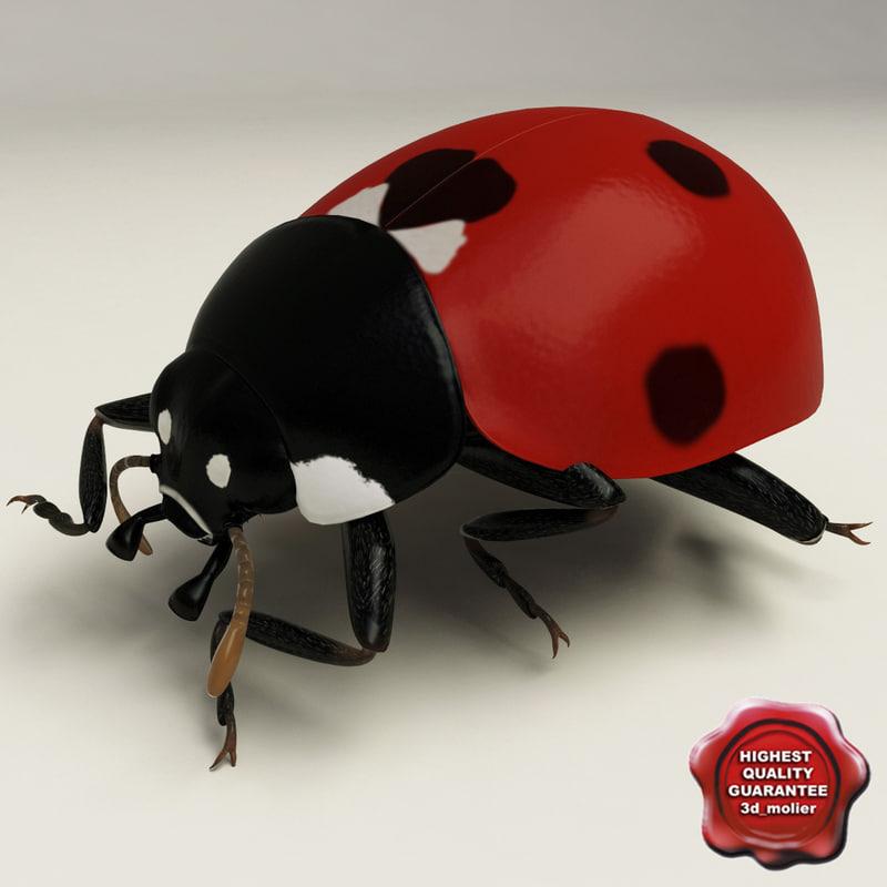 c4d ladybug pose4