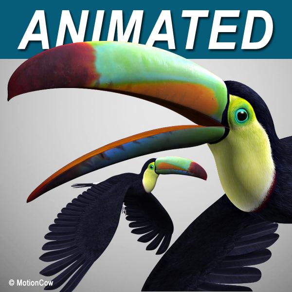 realistic flying toucan 3d model
