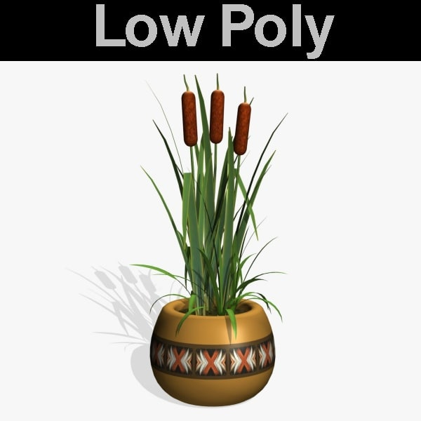3d model cattails pl