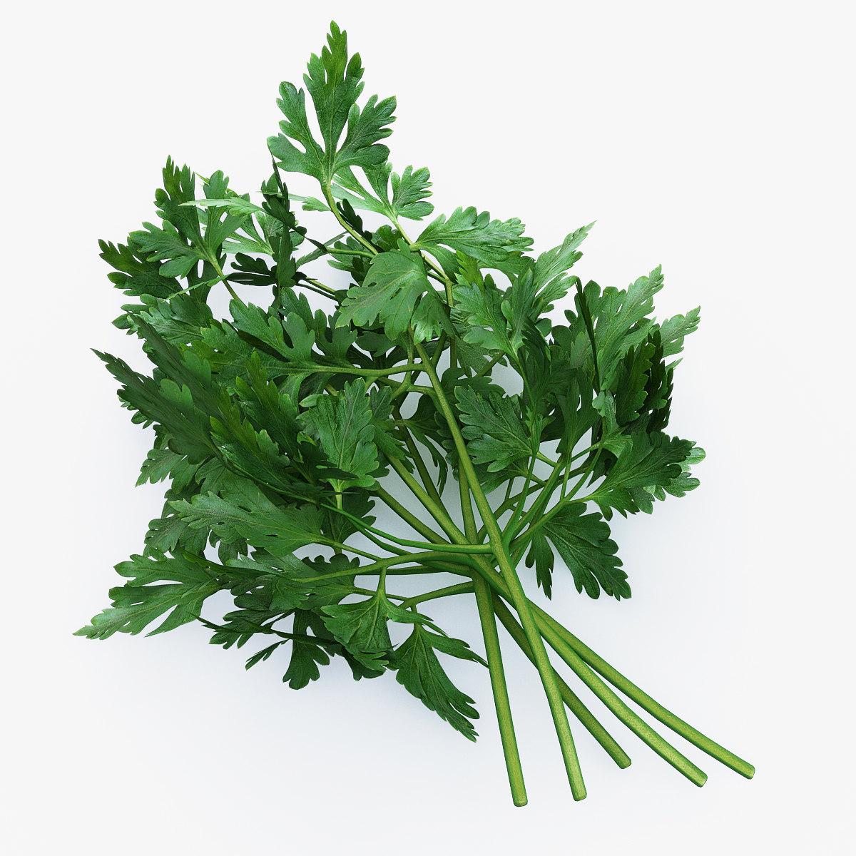 parsley use max