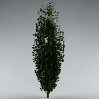3ds max bush small tree
