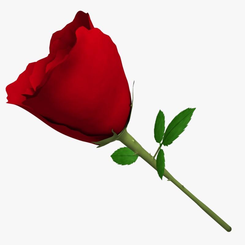3d model of rose flower
