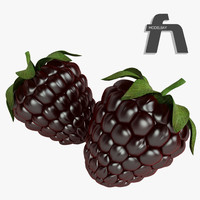 blackberry fruit 3d model
