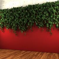 Wall hanging plant - A