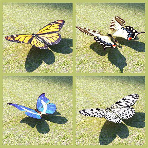 4 butterflies set 3d model