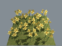 daffodil flower 3d model