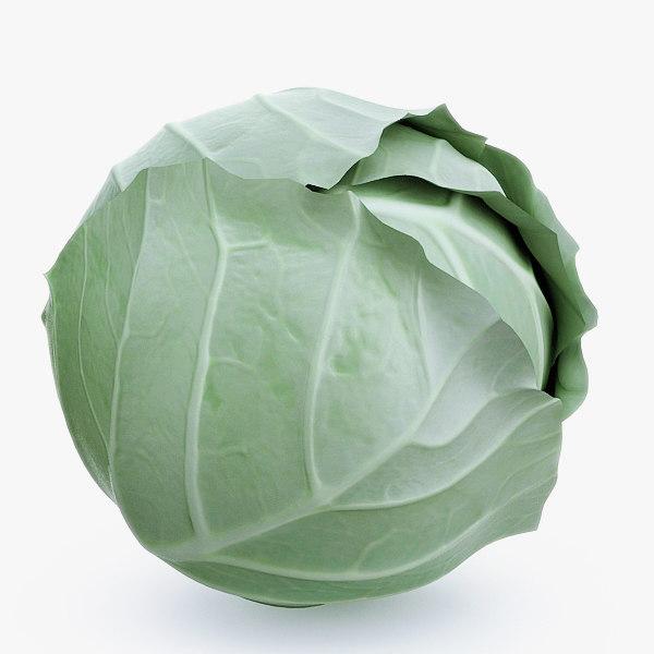 3dsmax cabbage