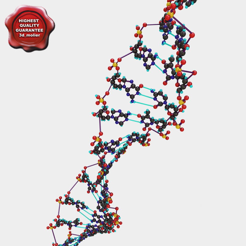 lightwave dna modelled