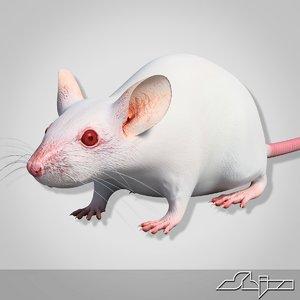 little white mouse 3d model