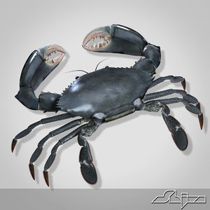 3ds max crab modeled