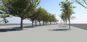 3d model pack 12 trees