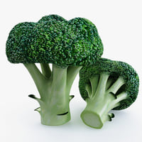 broccoli use 3d model