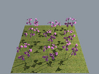 3d model of flower iris russian