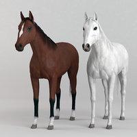 3d realistic horse games model