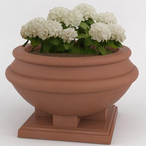 decorative pot plant c4d