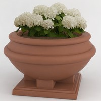 decorative pot plant c4d