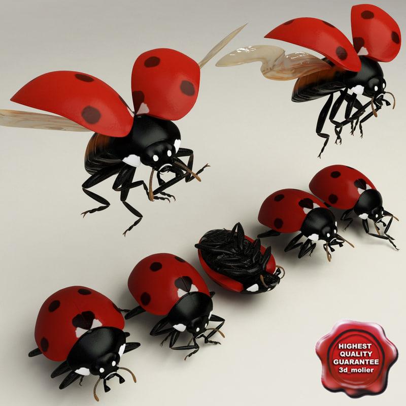 ladybug poses 3d max