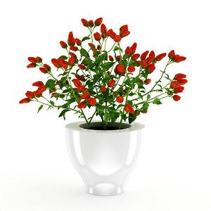 3d plant paprika