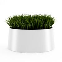decorative grass 3d model