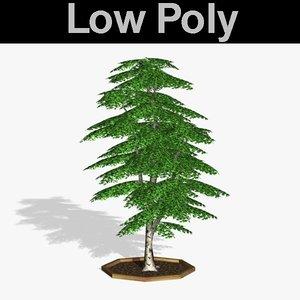 birch tree pl obj