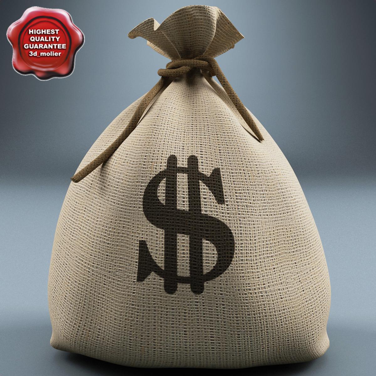 max money bag v2