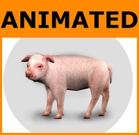 Animated Low Poly Pig