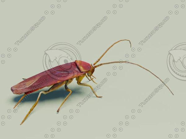3d cockroach roach