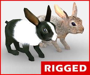 3d rigged rabbit model