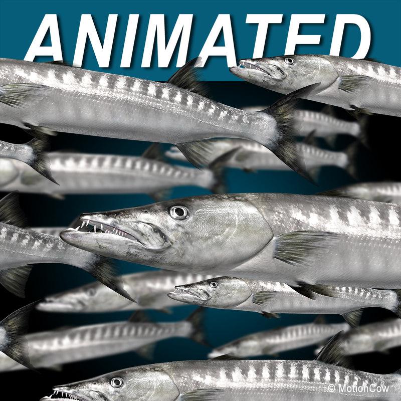 realistic barracuda fish 3d lwo