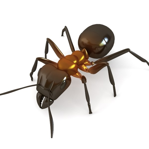 red ant 3d max