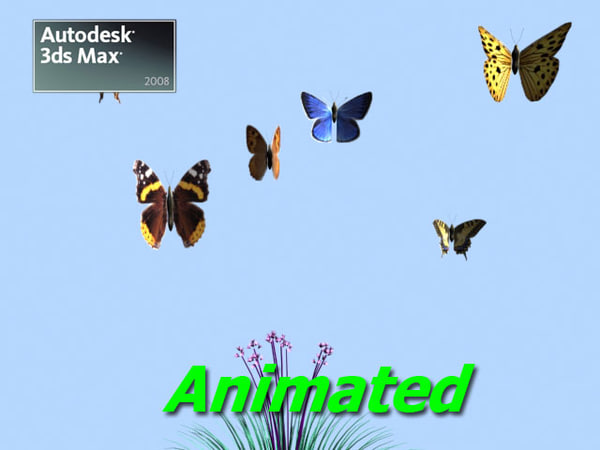 max butterflies assorted 2008 animation