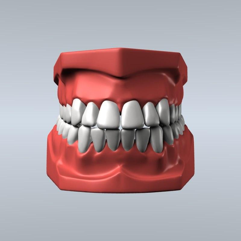 3d model dentist teeth gums modeled