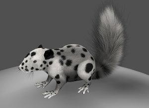 3d squirrels model