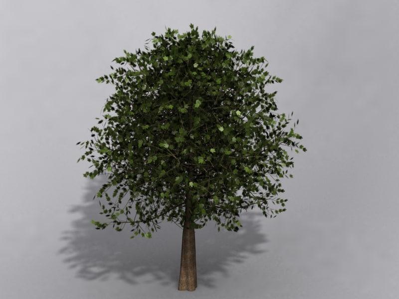 3ds max maple tree