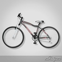 max bicycle forward hesper 817