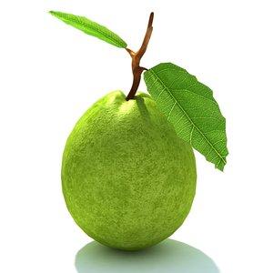 3d guava