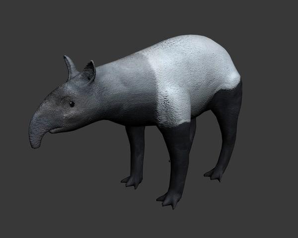 3d malayan tapir model