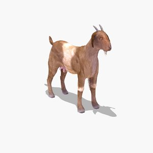 farmyard goat 3ds