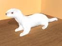 ferret 3D models