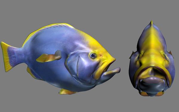 funny fish 3d model