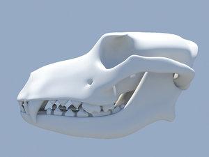 maya dog skull