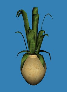 3d contemporary potted aloe plant model