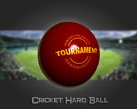 3d model cricket hard ball